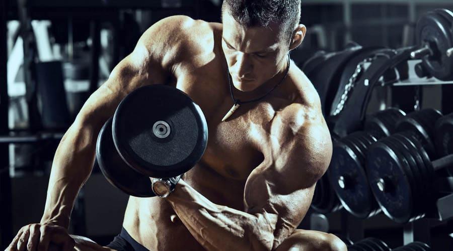 SUPLEMENTOS BICEPS GRANDE - Secreto para tener unos biceps grandes y poderosos