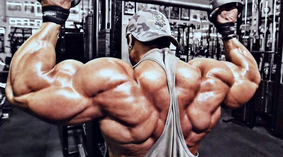 crecimiento muscular claves para lograr hacer crecer tus musculos